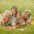 Happy family having a picnic on a sunny summer day — Stock Photo #42880817