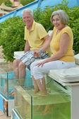 Senior Couple at Fish spa skin treatment — Stock Photo