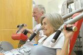 Bejaarde echtpaar in een sportschool — Stockfoto