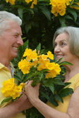 Loving elder couple — Stock Photo