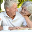 Beautiful older couple resting in the garden — Stockfoto #44702799