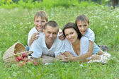 Family on a picnic — Stock Photo