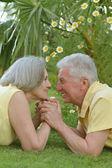 Cariñosa pareja mayor — Foto de Stock