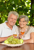 The old couple drinking wine — Stock Photo