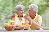 Elderly couple on nature — Stock Photo
