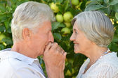 Aged couple outdoors — Стоковое фото
