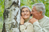 Senior couple in forest — Stock Photo