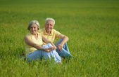 Adorable old couple in the middle of the field — Stock Photo