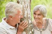 äldre par i skogen — Stockfoto
