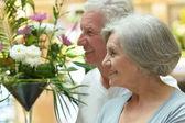 Senior couple portrait — Stock Photo
