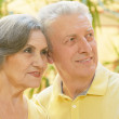 Elderly couple in summer park — Stock Photo #48647091