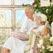 Beautiful elderly couple — Stock Photo #48647413