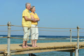 Elderly couple on the seashore — Stock Photo
