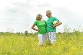 пожилые супружеские пары, в поле с мячом — Стоковое фото