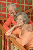 Elderly couple on stairs with railing — Stock Photo
