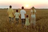 Family walking in field — Stock fotografie