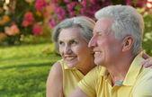 Elderly couple outdoor in summer park — ストック写真