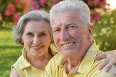 Senior couple outdoor in summer park — Photo