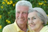 Senior couple on palm leaves background — Stock Photo