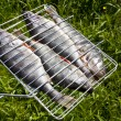 Stock Photo: Raw fish on grid