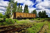 Rusted wagon — Stock Photo