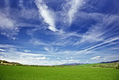 Sky and meadows — Stock Photo