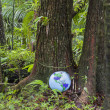 Inflatable Globe in Rainforest — Stock Photo