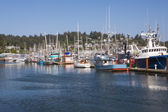 Newport Marina — Stock Photo