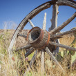Old wagon wheel — Stock Photo #30772727