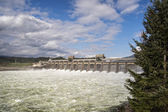 Bonneville Dam — Stock Photo
