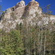 Stock fotografie: Crazy Horse Memorial