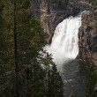 Upper Falls of the Yellowstone — Stock Photo