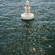 Buoy in harbor — Stock Photo