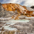 Stock Photo: Palette Spring in Yellowstone