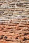 Zion Geology — Stock Photo
