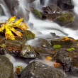 Time Lapse, rushing water — Stock Video