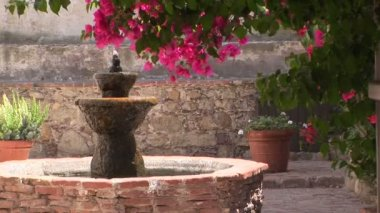Water fountain — Stock Video