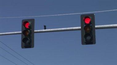 Traffic Signal — Stock Video