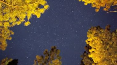 Night Sky, Time Lapse — Stock Video