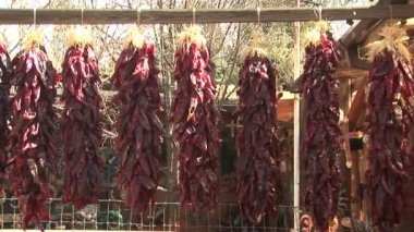 Bunches of Dried Chili Peppers — Stock Video