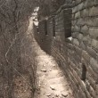 Original Section of the Great Wall of China — Stok video