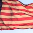 Stock Video: American Flag