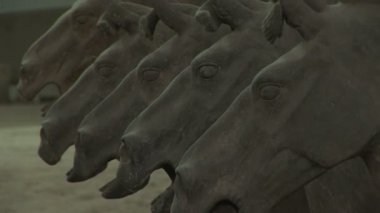 Terra Cotta Horses — Stock Video