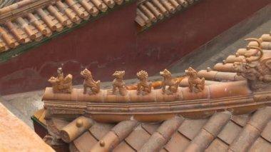 Ceramic Animals on Roof — Stock Video