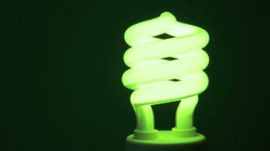 Energy Saving Light bulb — Stock Video