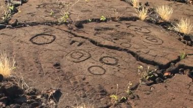 Petroglyph carved into lava rock — Stockvideo