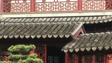 Ornate Rooftop detail — 图库视频影像