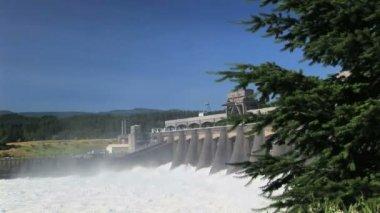 Bonneville Dam — Stock Video