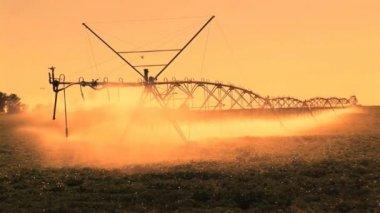 Farm Irrigation — Stock Video