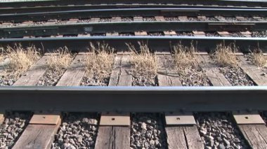 Weeds on railroad tracks — Stock Video